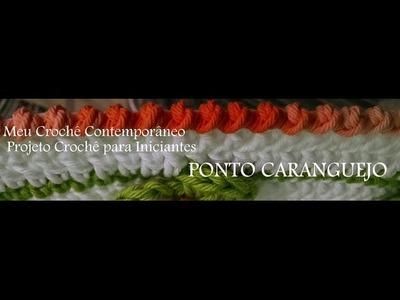 Projeto Crochê para Iniciantes   PONTO CARANGUEJO