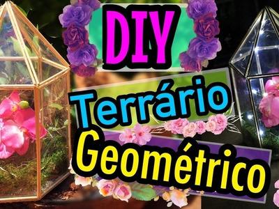 DIY - TERRÁRIO GEOMÉTRICO