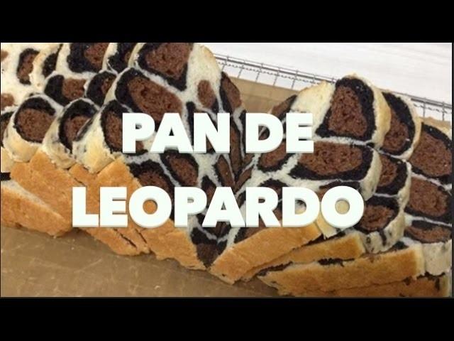 PAN DE LEOPARDO:  EXPECTATIVA.REALIDAD.
