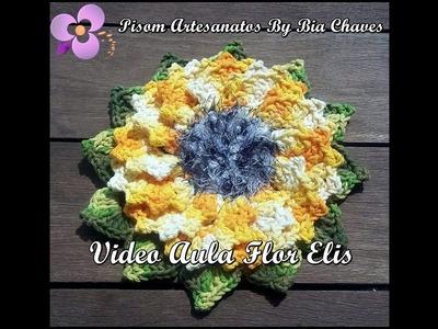 Vídeo Aula da Flor Elis