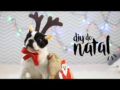 DIY de Natal | Fantasia de Rena para Cachorro