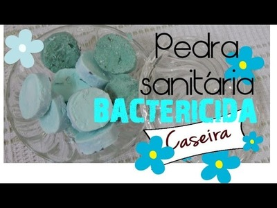 PEDRA SANITÁRIA BACTERICIDA CASEIRA