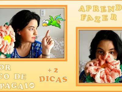 Flor de Crochê - Flor Bico de Papagaio Passo a Passo