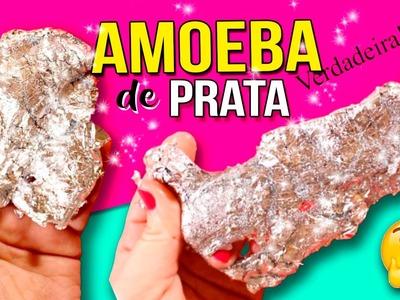 DIY AMOEBA de PRATA * Como fazer AMOEBA CASEIRA de PRATA