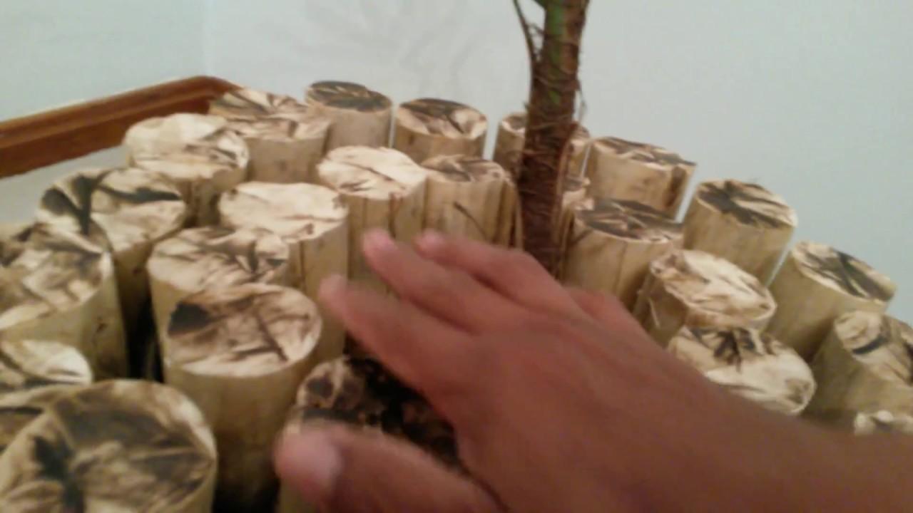 Decoração Vaso feito com toquinhos de eucalipto