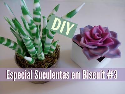 DIY - Arranjo de Suculentas em biscuit #3